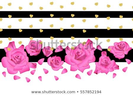 Rosa isolado flor-de-rosa branco vetor amor Foto stock © MaryValery