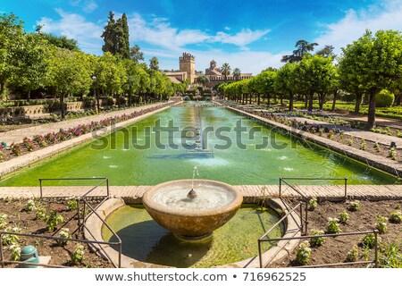 Spring gardens at the Alcazar, Cordoba, Spain Stock photo © neirfy