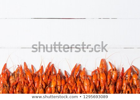 Boiled crayfish with seasonings Stock photo © Alex9500