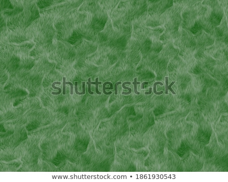 green shaggy skin of an animal closeup texture, Fur Texture Stock photo © ivo_13