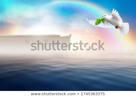dove with olive in the rainbow Stock photo © adrenalina