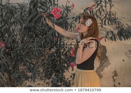 jonge · vrouw · lang · zomer · jurk · geïsoleerd - stockfoto © deandrobot