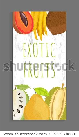 Mamey Citron, Coconut Sugar Apple, Pomelo Brochure Stock photo © robuart