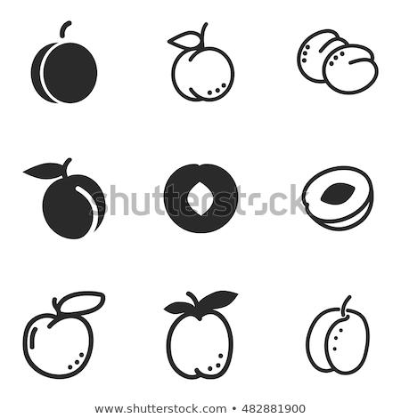 абрикос вектора икона символ дизайна Сток-фото © blaskorizov
