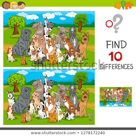 Talál különbségek játék fajtiszta kutyák rajz Stock fotó © izakowski