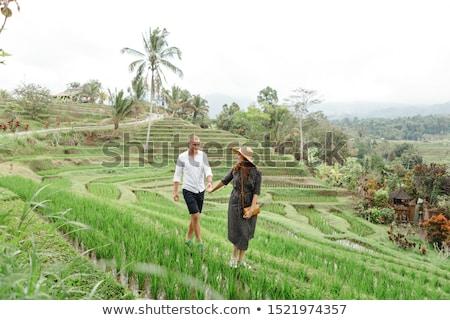 Young woman on Green cascade rice field plantation. Bali, Indonesia Stock photo © galitskaya