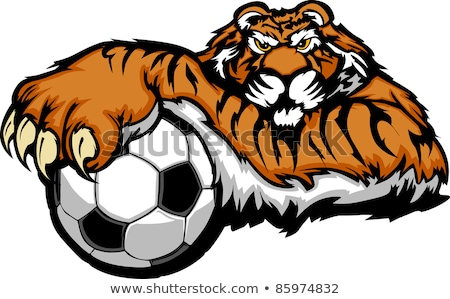 Stock photo: Tiger Mascot with Soccer Ball Vector Illustration
