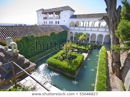 courtyard and pool in the generalife alhambra granada spain stock photo © hasloo