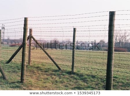 Konsantrasyon kamp Polonya dünya savaş siyah Stok fotoğraf © photocreo
