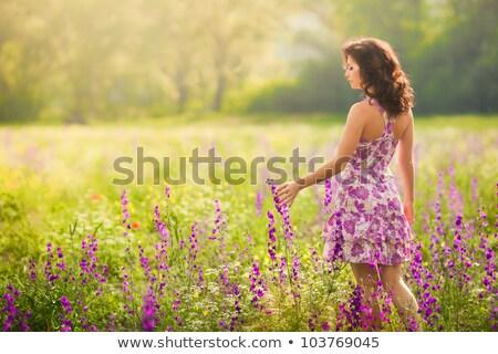 美しい ブルネット 女性 ロマンチックな 夏 ドレス ストックフォト © bartekwardziak