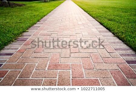 calçada · tijolos · textura · rua · fundo · pedra - foto stock © alessandrozocc