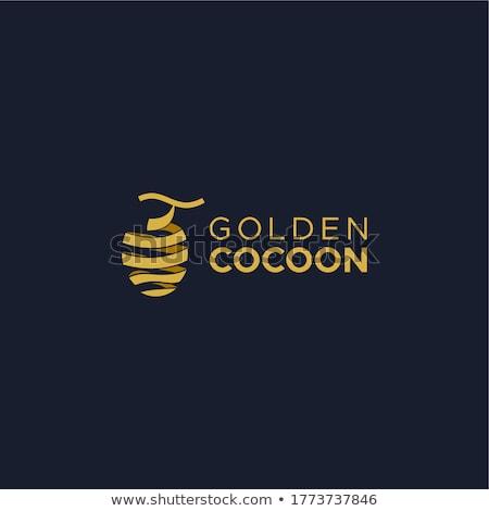 Cocoon Stock photo © mtoome