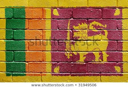 Flag of Sri Lanka on brick wall Stock photo © creisinger