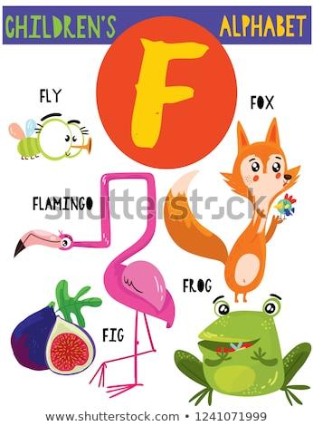 Fox alfabet książki szkoły szczęśliwy tle Zdjęcia stock © dagadu