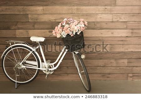 Vintage велосипед цветы женщину девушки весны Сток-фото © kariiika