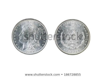 mint state silver dollars   obverse and reverse sides stock photo © tab62