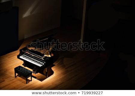 Piano à queue isolé blanche bois piano noir Photo stock © smuki