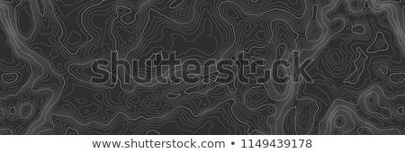 harita · örnek · vektör · bağbozumu · grunge · kâğıt - stok fotoğraf © ikatod