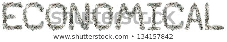 Gazdaságos 100 számlák szó ki izolált Stock fotó © eldadcarin