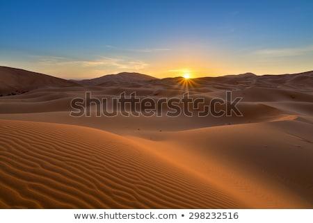 Gündoğumu çöl güzel soyut ışık Stok fotoğraf © meinzahn