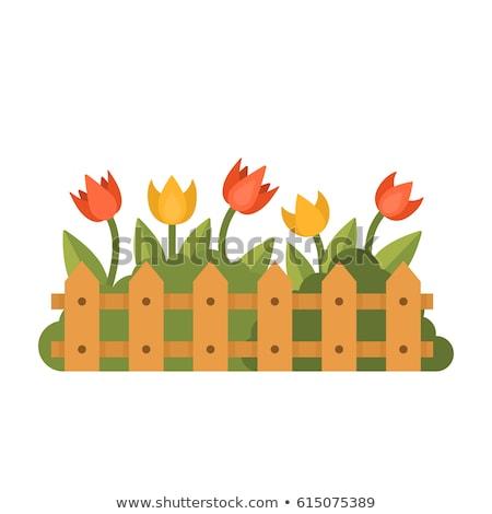 アイコン 花壇 中心 ベッド ブレード ストックフォト © zzve