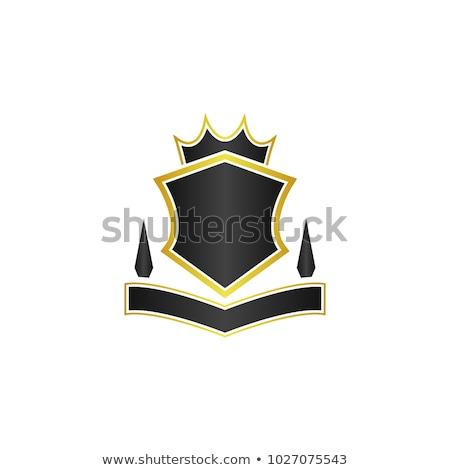 Glossy black and yellow shield emblem Stock photo © mikemcd