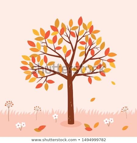 Sonbahar ağaç tebrik afiş düğün ahşap Stok fotoğraf © carodi