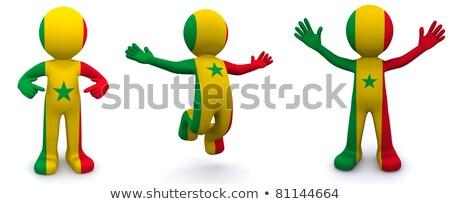 3D karakter vlag Senegal geïsoleerd Stockfoto © Kirill_M