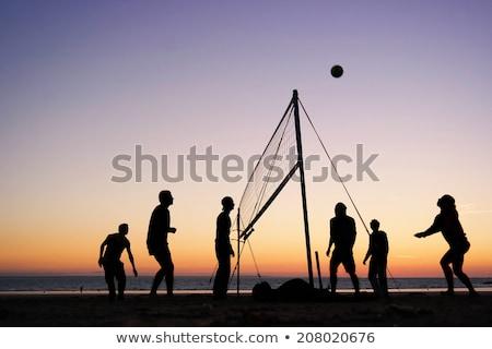 Frans volleybal team geïsoleerd Blauw Stockfoto © bosphorus