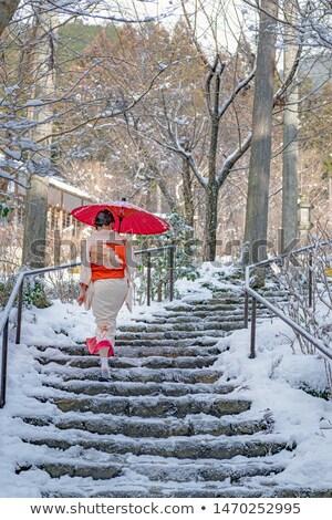 зима кимоно девушки Cute kawaii Манга Сток-фото © Ansy