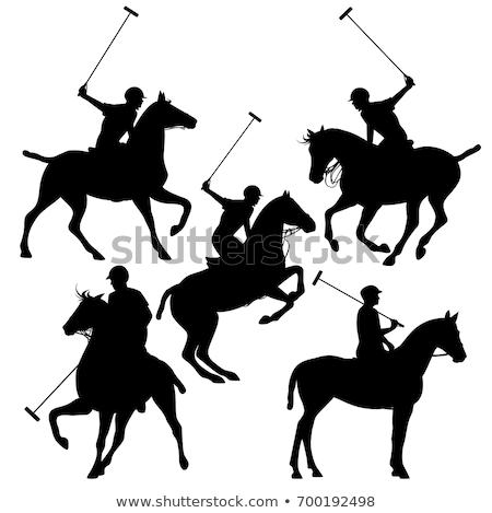 cavallo · sagome · palla · velocità · silhouette · paese - foto d'archivio © Slobelix