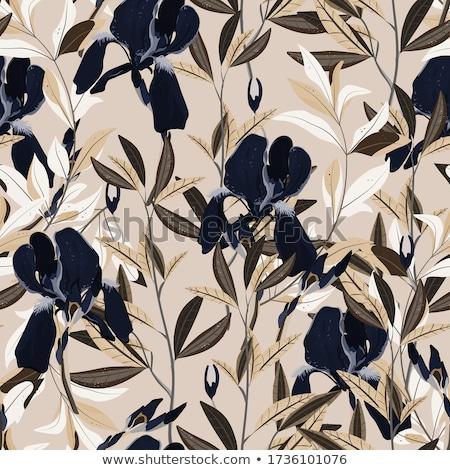 красочный · цветок · аннотация · иллюстрация · дизайна · искусства - Сток-фото © Pinnacleanimates