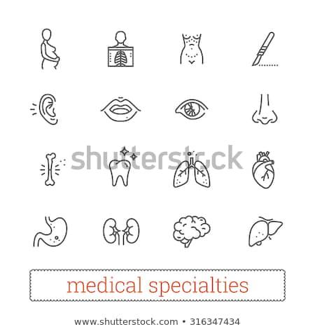 Human liver thin line icon Stock photo © RAStudio