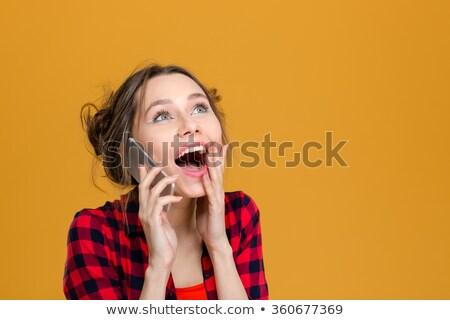 Séduisant charmant femme à carreaux shirt parler Photo stock © deandrobot