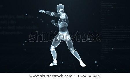 Боксер · жира · пингвин · перчатки · 3d · визуализации · здоровья - Сток-фото © kjpargeter