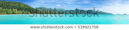 natural beach coast panoramic landscape background stock photo © cienpies