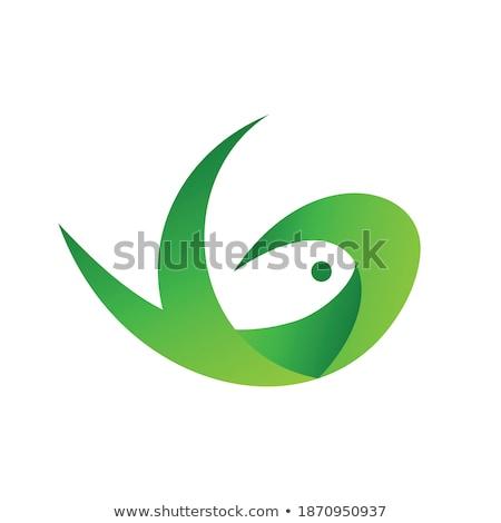 Vektor felirat absztrakt hal logo művészet Stock fotó © vector1st