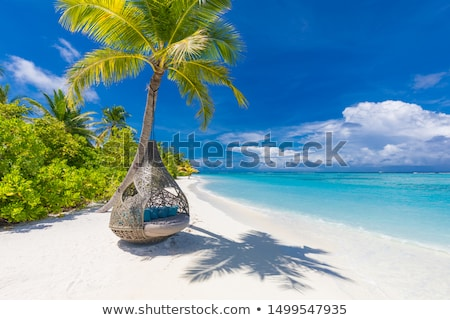 plaj · salıncak · tatil · yolculuk · zaman · güneş · ışığı - stok fotoğraf © bank215