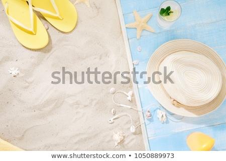 conchas · praia · grupo · fundo · oceano · azul - foto stock © karandaev