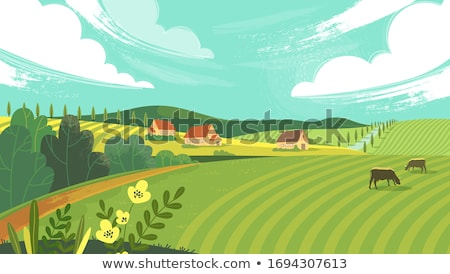 vector flat style illustration of farm with cows stock photo © curiosity