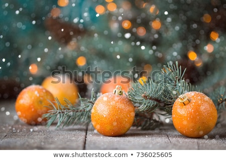 Christmas composition with tangerines stock photo © dariazu