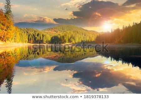reflection in autumn mountain stock photo © wildman