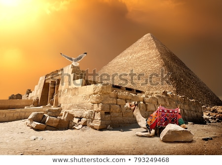 cammello · rovine · ingresso · cielo · panorama · deserto - foto d'archivio © givaga