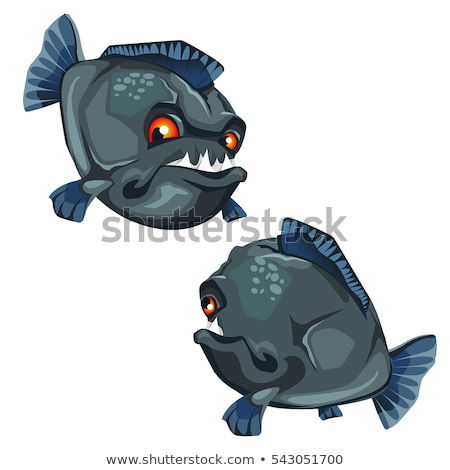 Anger piranha with sharp teeth cartoon vector illustration Stock photo © NikoDzhi