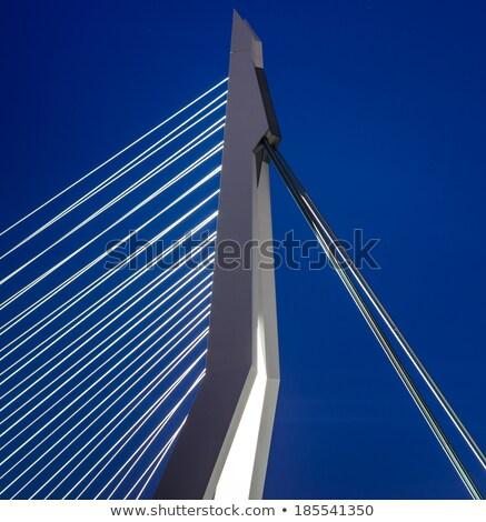 close up of the erasmus bridge stock photo © hofmeester
