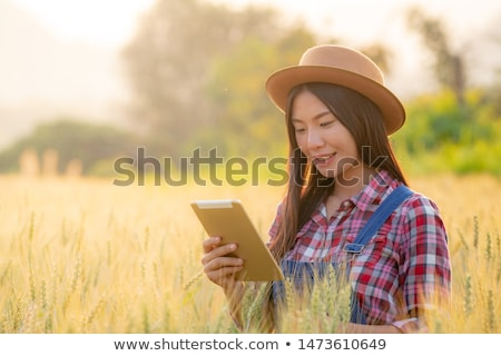 женщины фермер рожь области Сток-фото © stevanovicigor