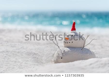 Australian Christmas by the beach Stock photo © lovleah