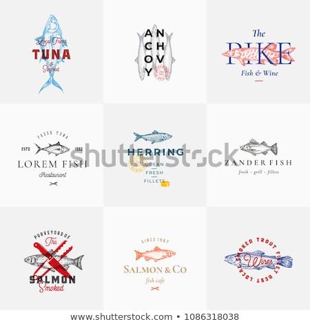 魚 シーフード ヴィンテージ アイコン ラベル ロゴ ストックフォト © FoxysGraphic