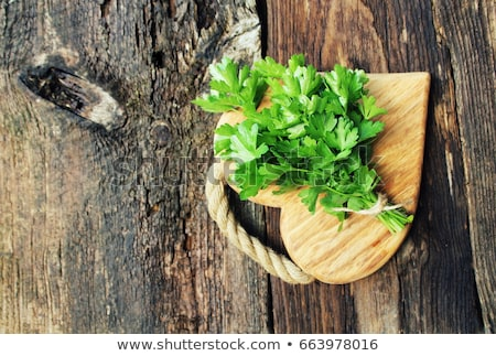 fresh organic parsley with knife on wooden cutting board macro with shallow dof stock photo © virgin