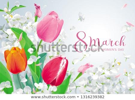 Tulipánok tavaszi virágok vektor üdvözlőlap elképesztő virágmintás Stock fotó © LisaShu